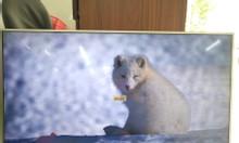 Tivi Sony 43 inch hình ảnh đẹp
