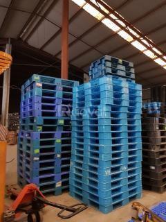 Pallet nhựa mới 95% - Bao giá toàn miền Bắc