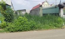 Đất mặt tiền đường nhựa gần khu công nghiệp bầu xéo xã sông trầu