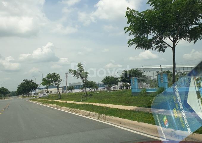 Bán đất d1 + d5, khu công nghiệp visip i, Thuận An, Bình Dương