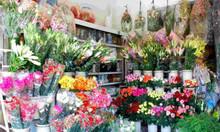 Shop hoa tươi tanghoa365