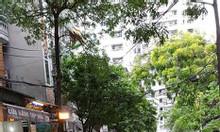 Gara, ô tô tránh phố Hoàng Văn Thái, 55m2, sát phố, hiện đại, 7.2 tỷ