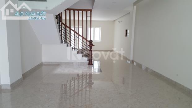 Cho thuê văn Phòng TTTM Gò Vấp, tầng trệt mở công ty, ngang 5m x 16m (ảnh 4)