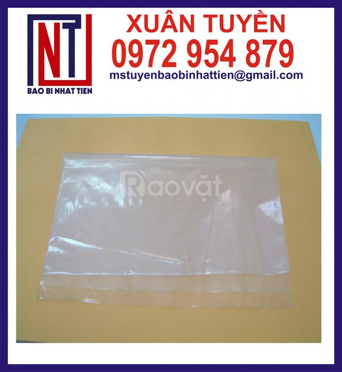 Sản xuất bao bì nilon dạng túi - cuộn (ảnh 1)