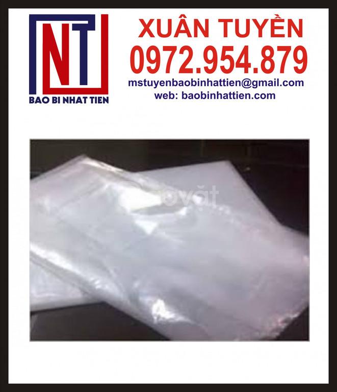 Sản xuất bao bì nilon dạng túi - cuộn (ảnh 6)