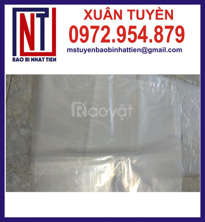 Sản xuất bao bì nilon dạng túi - cuộn (ảnh 4)