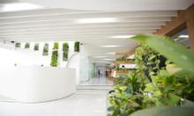 Cho thuê văn phòng ảo giá rẻ tại Tân Bình (Premier Office)