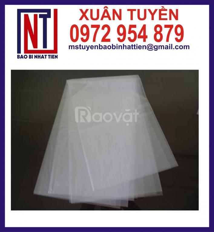Sản xuất bao bì nilon dạng túi - cuộn (ảnh 7)