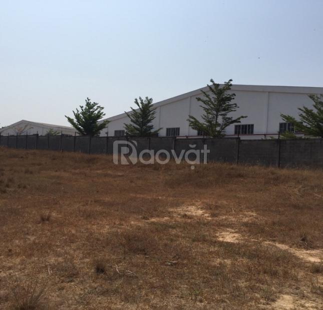 Bán đất xây nhà xưởng tại khu công nghiệp Sóng Thần 3, Bình Dương