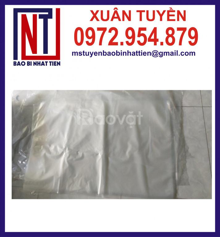 Sản xuất bao bì nilon dạng túi - cuộn (ảnh 8)