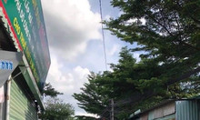 Chính chủ bán đất đẹp tại Thái Hòa, Tân Uyên, Bình Dương