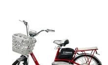 Cửa hàng mua bán xe đạp chất lượng cao – giá rẻ tại Sài Gòn