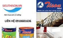 Địa chỉ bán sơn dầu Tison giá rẻ chính hãng tại TPHCM