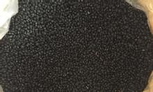 Cung cấp đậu đen xanh lòng hạt nhỏ