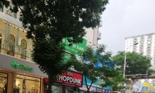 Bán nhà Phố Nguyễn Thị Định diện tích 58m2 măt tiền 5m gara ô tô kinh doanh