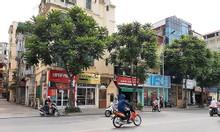 Bán nhà c4 quận Thanh Xuân gần mặt phố, ô tô tránh kinh doanh sầm uất