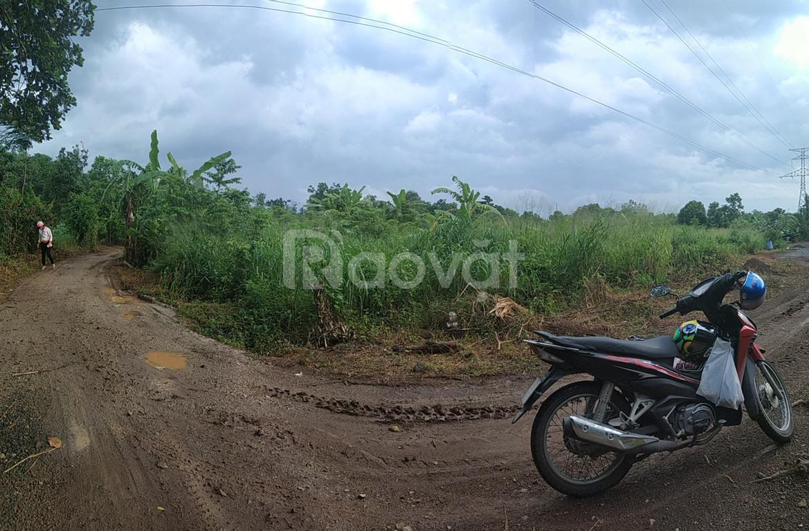 1 mẫu đất xã Bàu Cạn cần bán, chỉ 500 nghìn/m2, giá rẻ