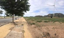 Bán 3.1 ha đất đường ven biển Mũi Dinh Ninh Thuận 3.6 tỷ/ ha