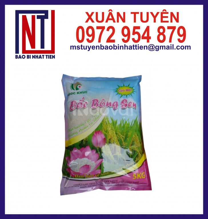 Bao bì gạo 5kg in ống đồng