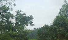912m2  đất thổ cư  sổ đỏ Nam Sơn, Sóc Sơn 900tr