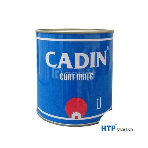 Sơn chịu nhiệt Cadin màu đen 600 độ chất lượng cho công tình