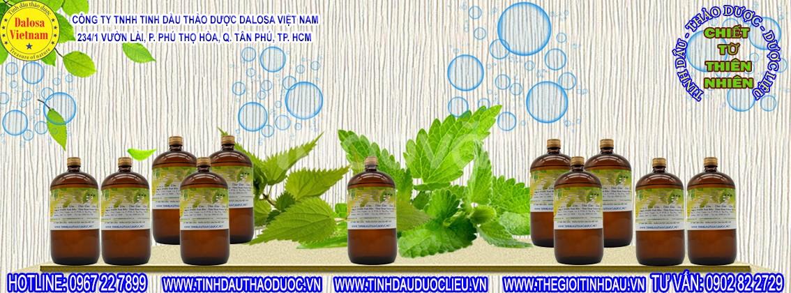 Tinh dầu Sả Java chống côn trùng 1000ml