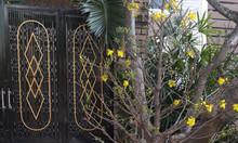Cho thuê nhà đẹp nguyên căn tại phường Thuận Phước, quận Hải Châu, Đà Nẵng, giá tốt