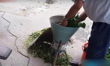Bán máy băm lục bình, dây khoai, rau muống nhỏ nhuyễn cho cá, gà vịt