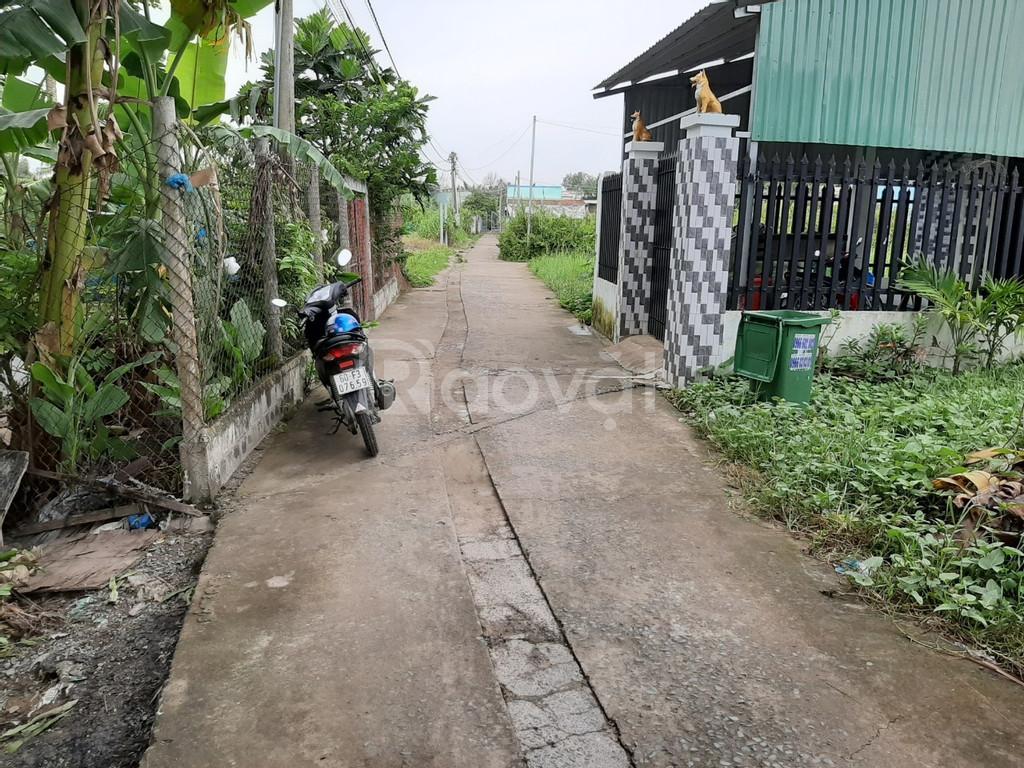 Chính chủ cần bán đất tại xã Phú Hữu,huyện Nhơn Trạch, Đồng Nai