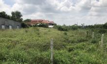 Bán đất ngay gần chợ Phú Hòa Đông, Củ Chi giá rẻ