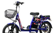 Xe đạp điện Before all