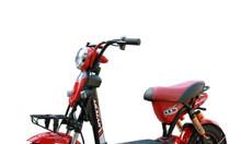 Xe đạp điện Bluera Bike