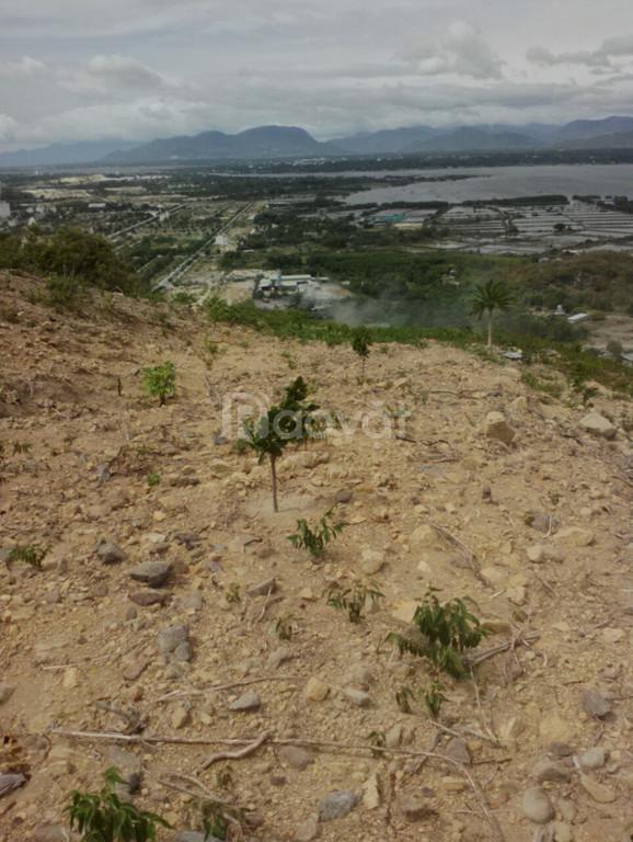 Bán đất đường N1B Vĩnh Bình, Cam Lâm, view đất đẹp, giá đất tốt