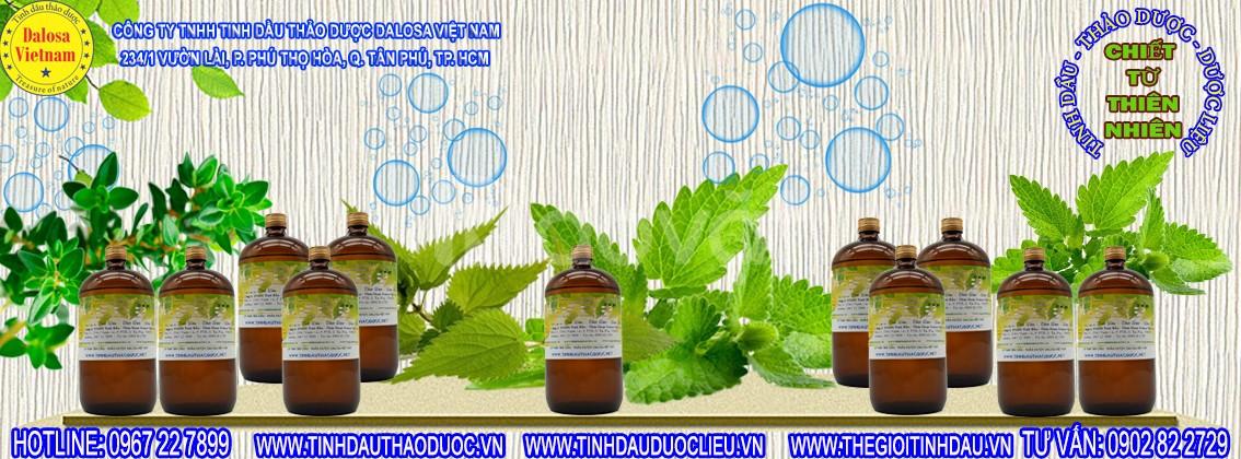 Tinh dầu Hương Nhu kích thích mọc tóc 1000ml (ảnh 1)