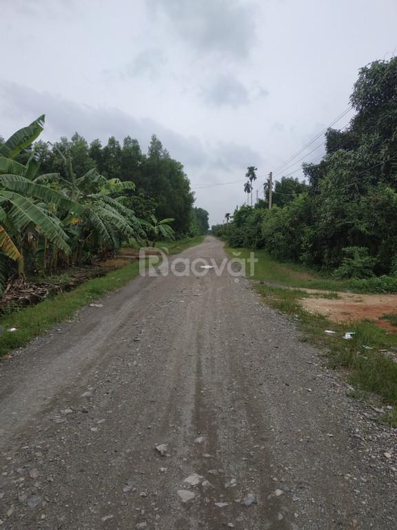 4 triệu/m2 bán nhanh 4 sào đất có thổ cư Long Phước, Long Thành
