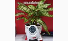 Trọn bộ 1camera Global full HD 2.0M, 3tr, bảo hành 2 năm