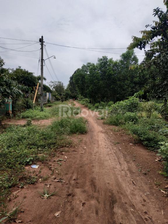 Bán gấp 6000m2 đất giá 3 tỷ tại xã Phước Bình, Long Thành, sổ riêng