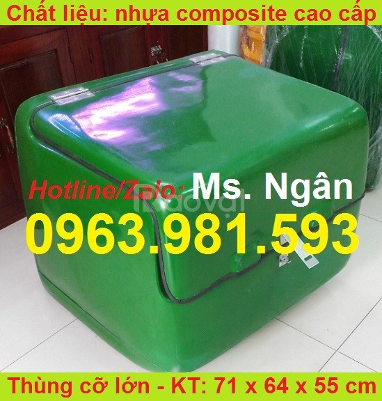 Thùng chở hàng giá rẻ, thùng giao cơm có mút giữ nhiệt giá rẻ