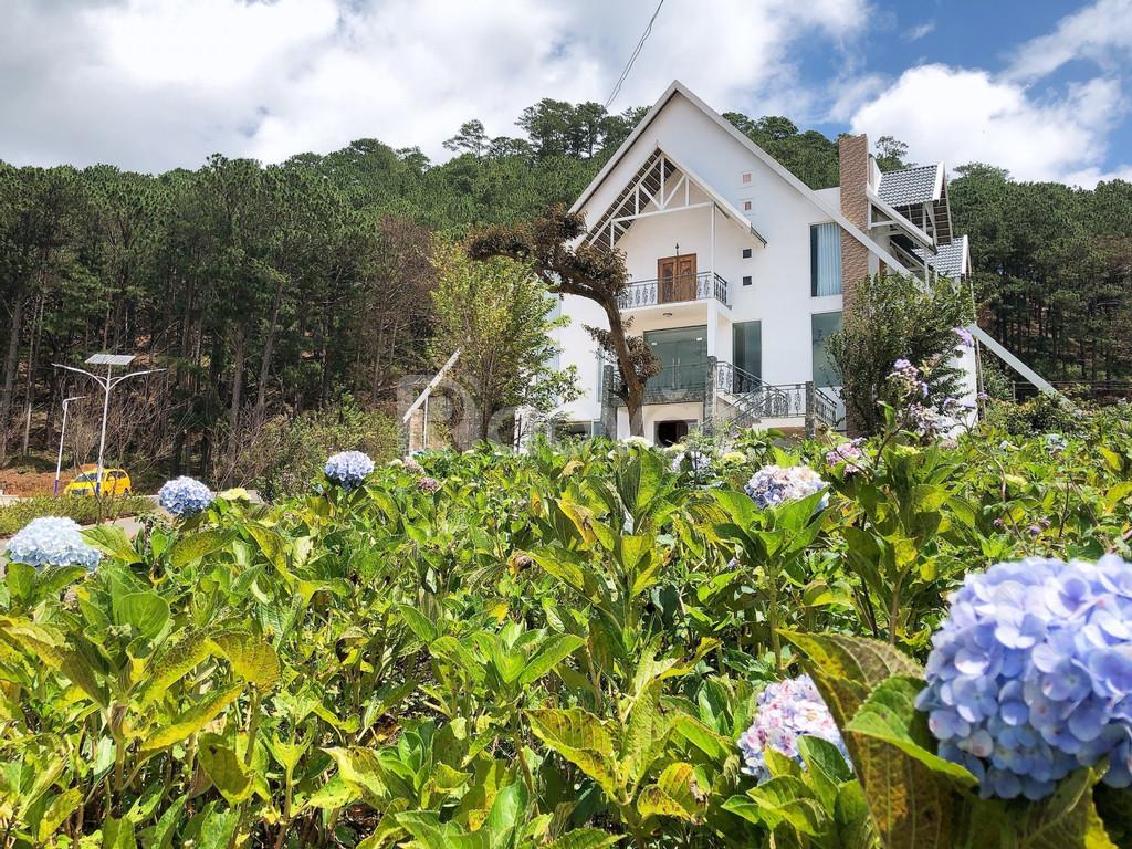 Còn 1 lô đất nền biệt thự đẹp nhất dự án Langbiang Town