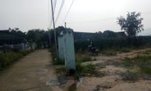 Đất mặt tiền hẻm bê tông 4m, 45x90m – Tân Lập, Hàm Thuận Nam