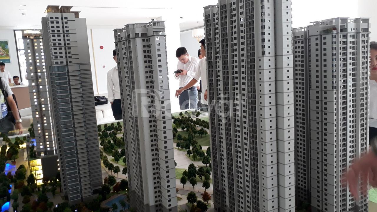 Chung cư D'.Capital Trần Duy Hưng, CK 25% (ảnh 5)