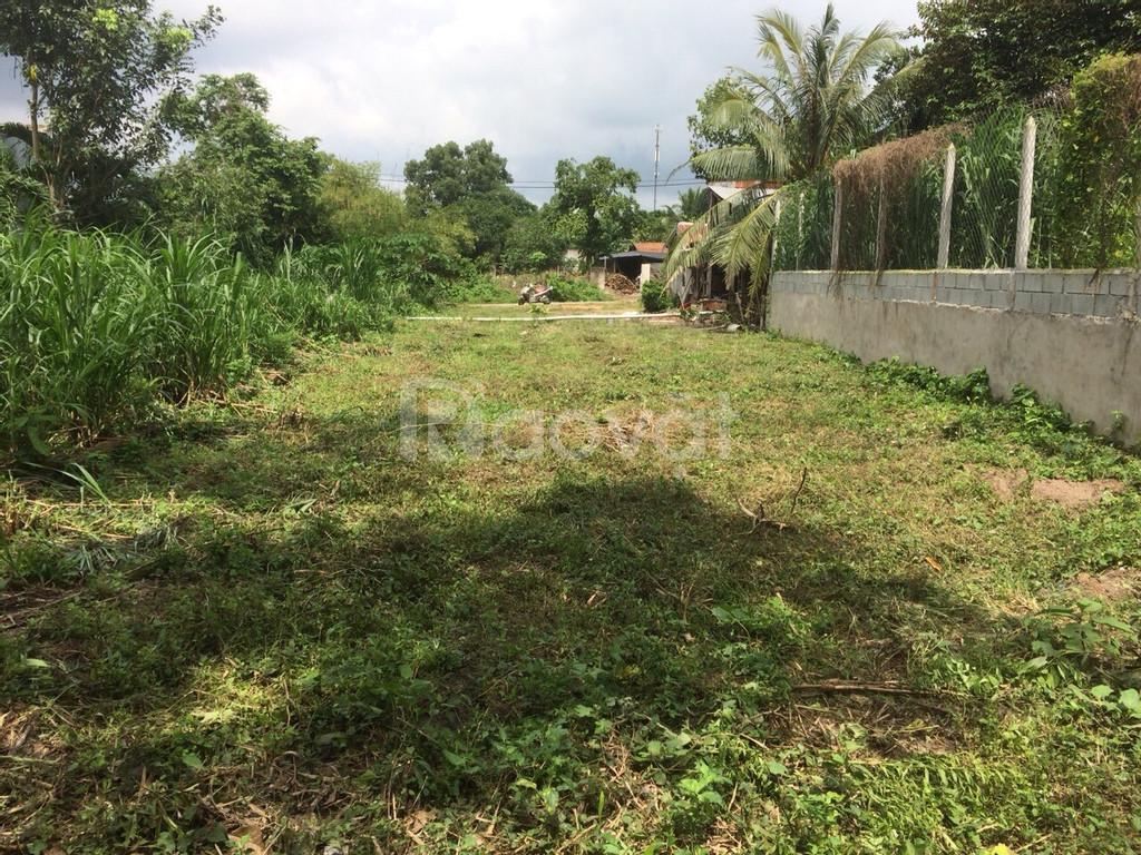 Chính chủ bán đất giá rẻ mt đường nhánh cây trôm Mỹ Khánh huyện Củ Chi