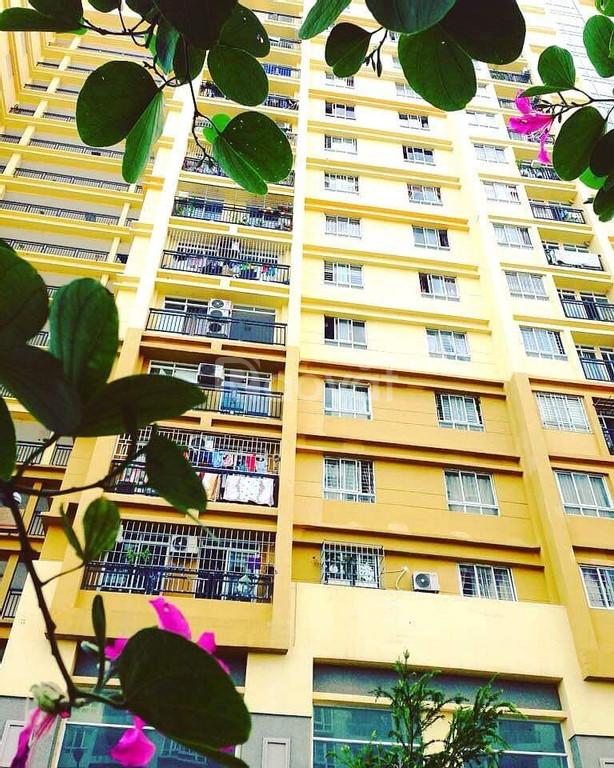Cho thuê chung cư Petroland, 2pn,2wc nhà trống.