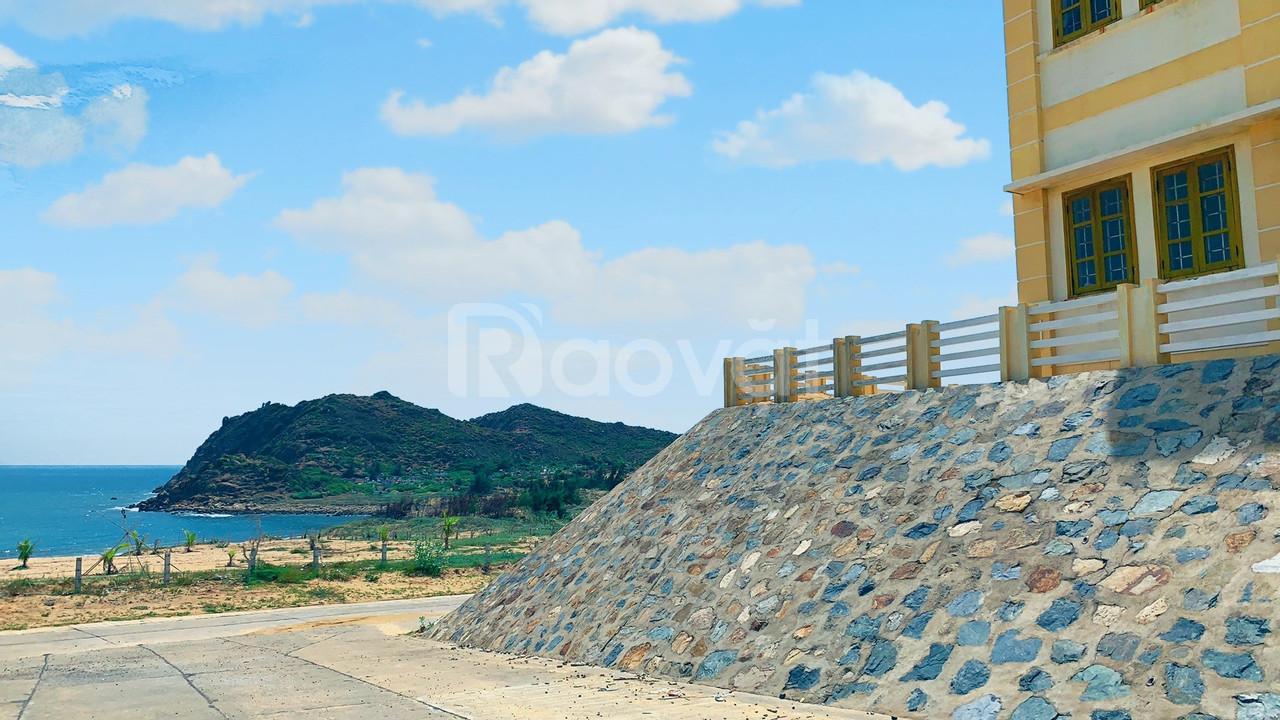 Đất nền view trực diện biển - vị trí vàng cho nhà đầu tư. (ảnh 3)