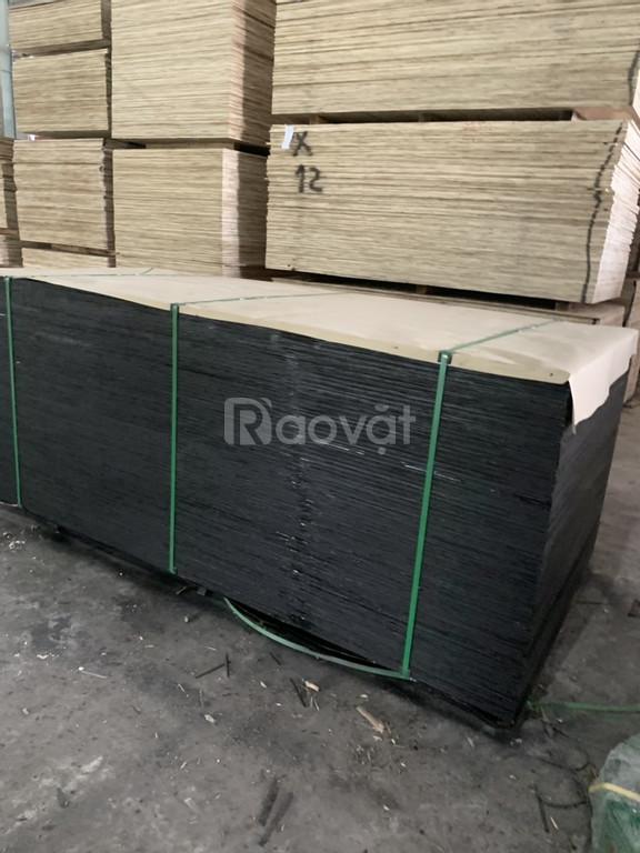 Ván ép phủ phim giá rẻ từ 230k- Ninh Bình