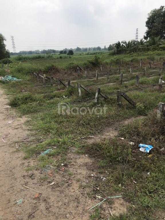 Bán đất giá rẽ 430tr/110.xã Phú Hòa Đông huyện Củ Chi.