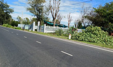 Chính chủ cần bán nhà và đất mặt tiền 42m tại Hòa Minh, Tuy Phong