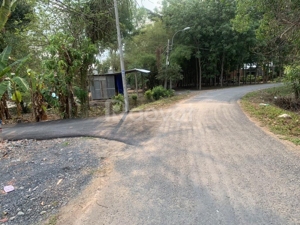 Bán đất biệt thự vườn giá rẻ xã Thái Mỹ huyện Củ Chi SHR