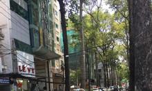 Bán nhà mặt phố Lê Bình, P4, Tân Bình, 6T, thang máy, 110m2, 26,8 tỷ.