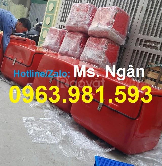 Thùng chở hàng cỡ lớn, thùng giao hàng sau xe máy, thùng giao cơm